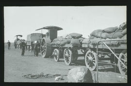 Convoy of tractors and trailers in desert.